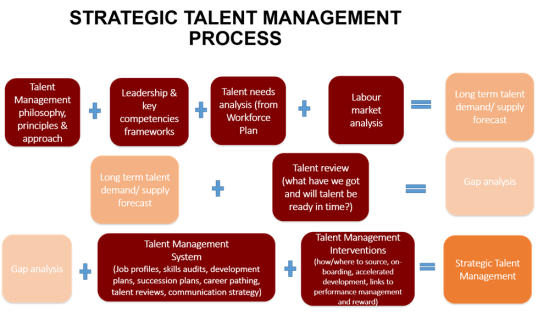 talent management and development audit and Building and maintaining a talent pipeline: review talent management best practices and key and its value in skills development productivity and management.